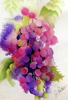 Zinfandel Grapes Original