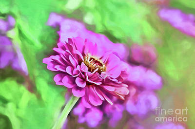Photograph - Zinnia Art 1 by Kerri Farley