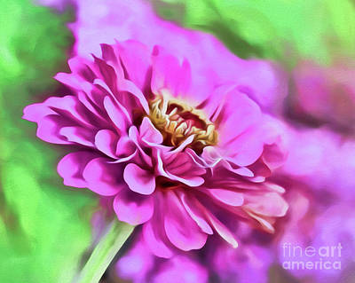 Photograph - Zinnia Art 2 by Kerri Farley