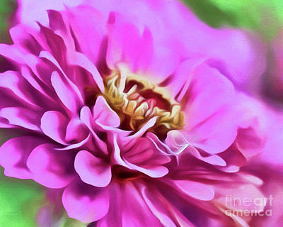 Photograph - Zinnia Art 3 by Kerri Farley