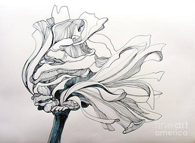 Zinnia Painting - Zinnia by Wendy Westlake