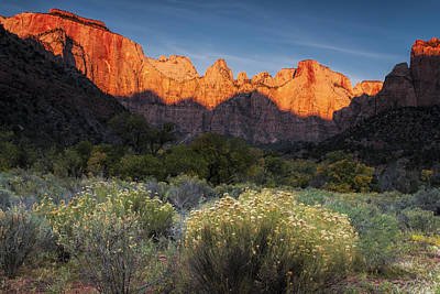 Zion National Park Photograph - Zion At Dawn by Andrew Soundarajan