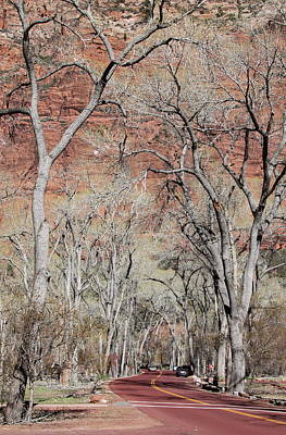 Zion At Kayenta Trail Art Print by Viktor Savchenko