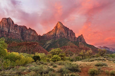 Photograph - Zion Awakens by Expressive Landscapes Fine Art Photography by Thom