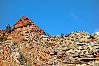 Photograph - Zion Checkerboard Formations by Robert Meyers-Lussier