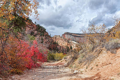 Photograph - Zion Fall Foliage by John M Bailey