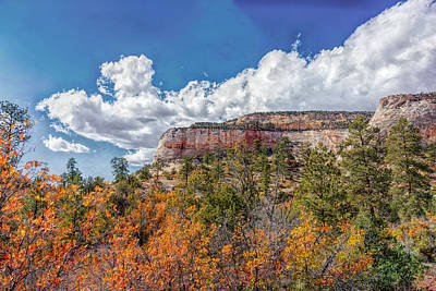 Photograph - Zion Gold by John M Bailey