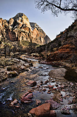 Photograph - Zion by Heather Applegate