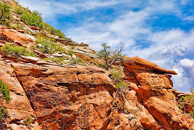 Photograph - Zion Hike 1 View 3 by Robert Meyers-Lussier