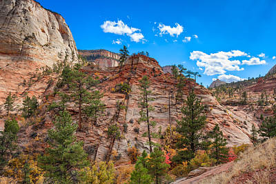 Photograph - Zion Hills And Valleys by John M Bailey