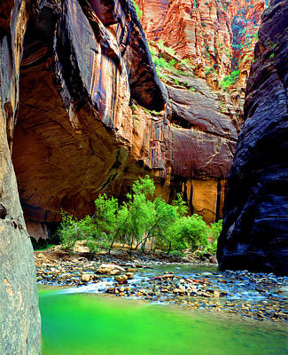 Photograph - Zion Narrows #2 by Frank Houck