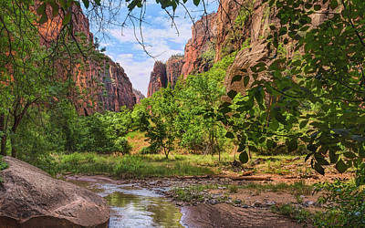 Photograph - Zion Narrows Artistry by John M Bailey
