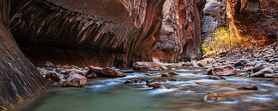 Zion National Park Photograph - Zion Narrows Autumn by Andrew Soundarajan
