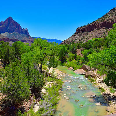 Photograph - Zion National Parc by Dany Lison