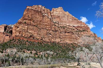 Photograph - Zion National Park - 4 by Christy Pooschke