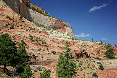 Photograph - Zion National Park 6 by Susan McMenamin