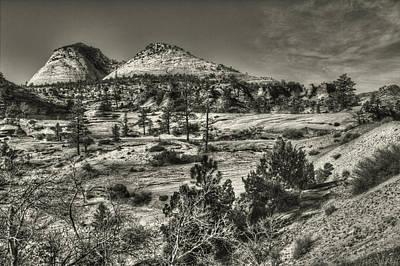 Photograph - Zion National Park Along Rt 9 by Roger Passman