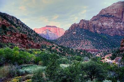 Photograph - Zion National Park by Charlotte Schafer