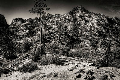 Photograph - Zion National Park Eastern Side by Roger Passman