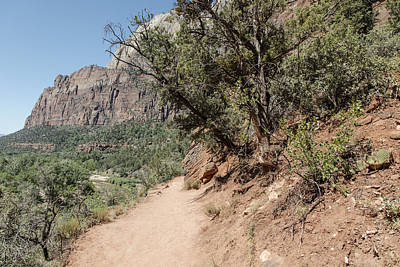 Photograph - Zion National Park Hike  by John McGraw
