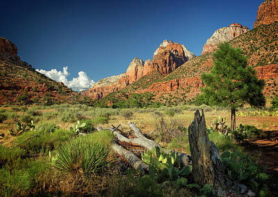 Photograph - Zion National Park IIi by Ricky Barnard