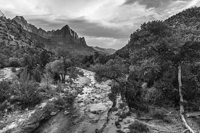 Photograph - Zion National Park In Black And White  by John McGraw
