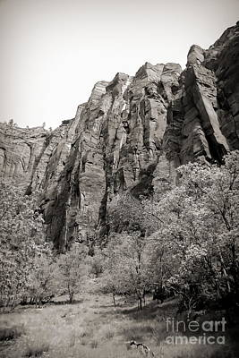 Photograph - Zion National Park Sepia Tones  by Chuck Kuhn