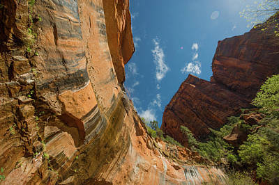 Photograph - Zion National Park Under Blue Sky by Mike Shaw