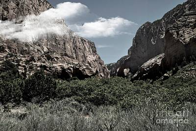 Photograph - Zion National Park Utah 3 by Bob Pardue