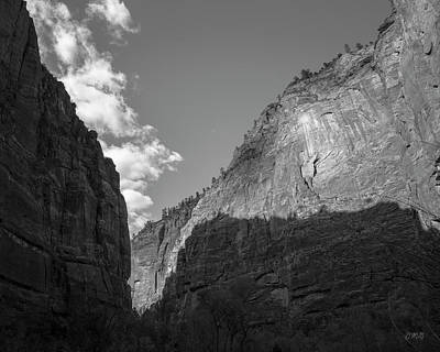 Photograph - Zion National Park Utah I Bw by David Gordon