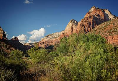 Photograph - Zion National Park V by Ricky Barnard