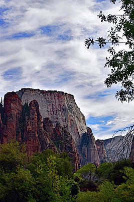 Photograph - Zion No. 5-1 by Sandy Taylor