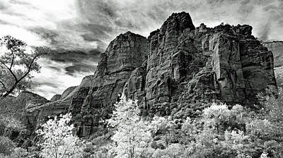 Photograph - Zion No. 67-2 by Sandy Taylor