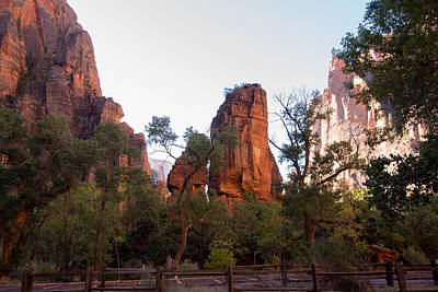Photograph - Zion N.p.  Temple Of Sinowava - The Pulpit by Michael Gooch