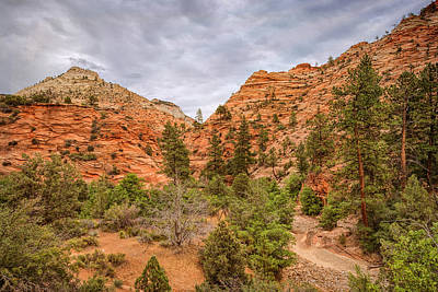 Photograph - Zion Pageantry by John M Bailey