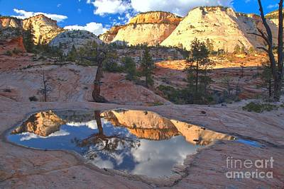 Photograph - Zion Park Reflections by Adam Jewell