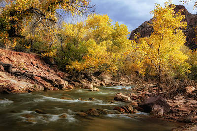 Zion National Park Photograph - Zion River At Autumn by Andrew Soundarajan