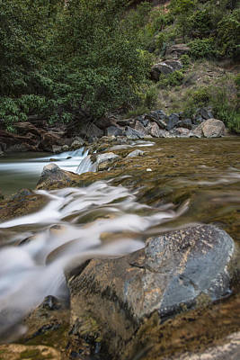 Photograph - Zion River by John McGraw