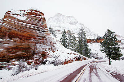 Photograph - Zion Road In Winter by Daniel Woodrum