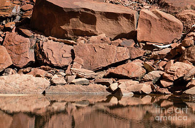 Photograph - Zion--rocky Shore by PJ Boylan