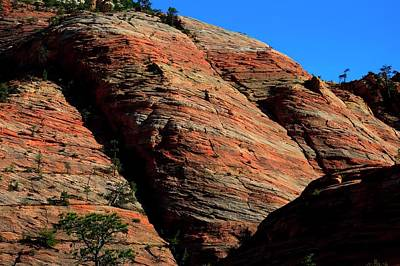 Photograph - Zion Shapes by Jerry Sodorff