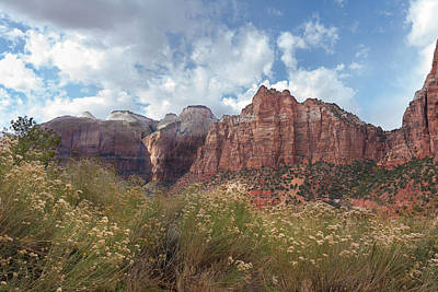 Photograph - Zion Travels by John M Bailey