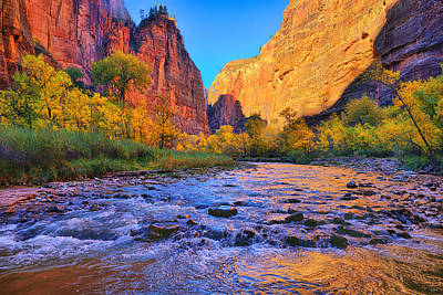 Photograph - Zion Virgin River by Greg Norrell