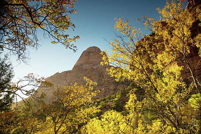 Photograph - Zion's Colors by Kunal Mehra
