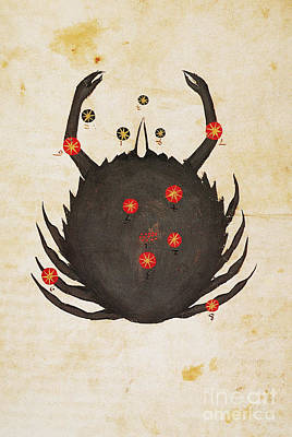Photograph - Zodiac: Cancer, C1350 by Granger