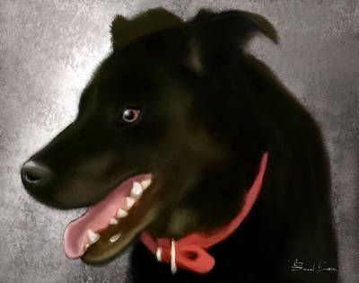 Painting - Zoey by Sannel Larson