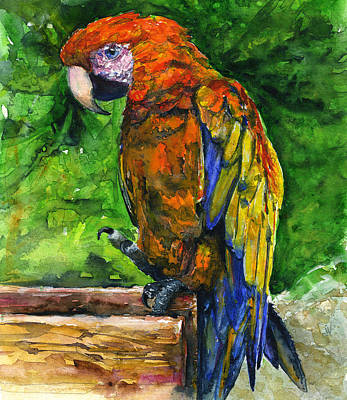 Painting - Zoo In St. Maarten by John D Benson