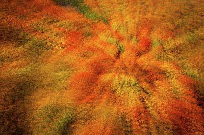 Photograph - Zoom Into Autumn  by Jenny Rainbow