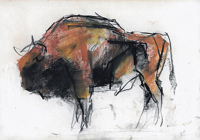 Buffalo Drawing - Zubre  Bialowieza by Mark Adlington