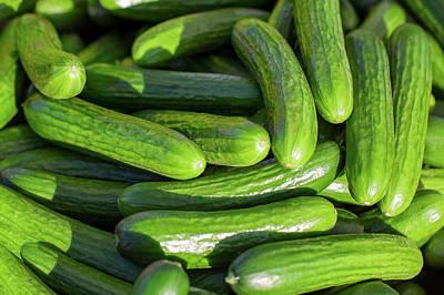 Zucchini Photograph - Zucchini Squash by Todd Klassy